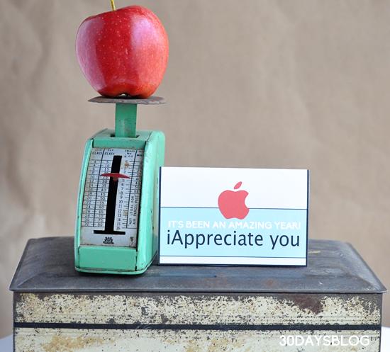 Teacher Gift Idea www.thirtyhandmadedays.com