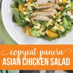 Copycat Panera Asian Chicken Salad- try this one from home and you'll be hooked. via thirtyhandmadedays.com