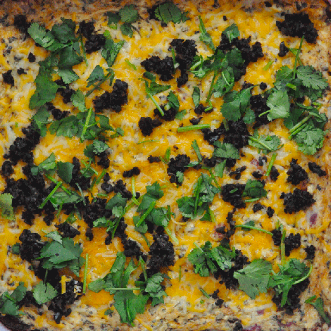 Appetizer Recipes - a round up of the very best. Featuring chile verde dip