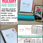 Make your own fabulous mini holiday binder - includes instructions and 14 printables to help you stay organized for the holidays! Amazing- must download! www.thirtyhandmadedays.com