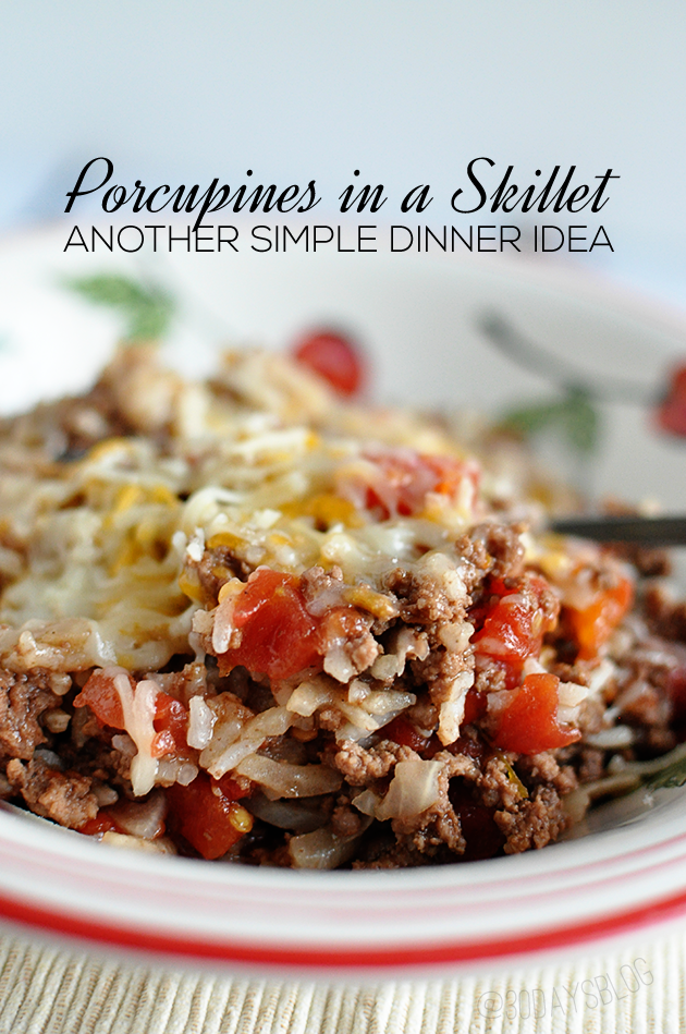 Porcupines in a Skillet- one of our favorite dinner ideas. A family favorite! www.thirtyhandmadedays.com