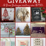 Fabulous Group Holiday Giveaway with 2 Prize Packages!