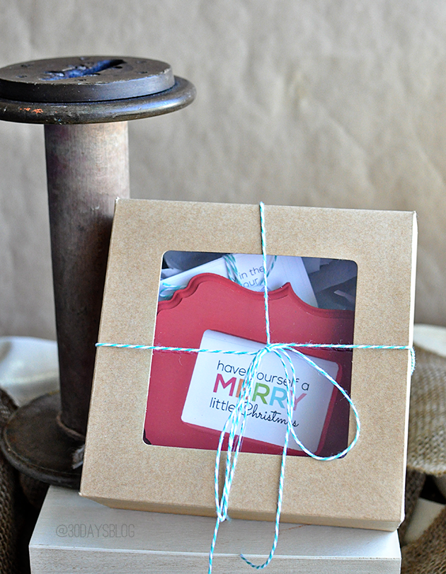 Interchangeable Ornament Gift Idea- perfect for friend, neighbor or teacher.  With printables from www.thirtyhandmadedays.com