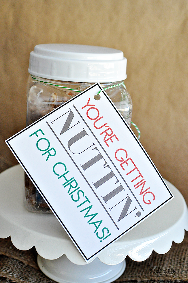 Christmas Gift Ideas- Sugar & Spiced Nuts with printable from www.thirtyhandmadedays.com