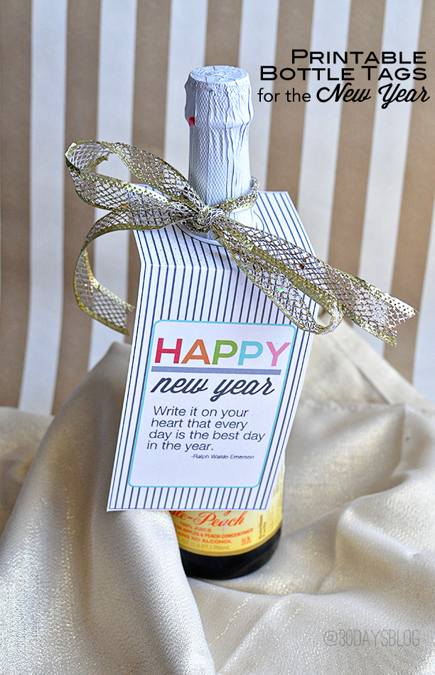 Fun New Year's Eve Printable from www.thirtyhandmadedays.com