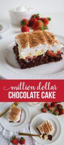 Amazing Chocolate Cake Recipe - Million Dollar Cake - our family favorite. via www.thirtyhandmadedays.com