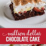 Amazing Chocolate Cake Recipe - Million Dollar Cake - our family favorite. via www.thirtyhandmadedays.com