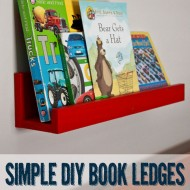 Simple Book Ledges