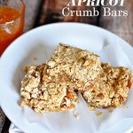 Amazingly delicious Apricot Crumb Bars- must try recipe! So good and easy to make | Thirty Handmade Days
