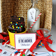 Fun Gift Basket Idea + Printable Coordinating Tags