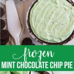 Frozen Mint Chocolate Chip Pie - using only 3 ingredients. It's a family favorite. www.thirtyhandmadedays.com
