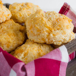 Homemade Biscuits - these melt in your mouth cheddar biscuits are not only easy to make but soooo good!