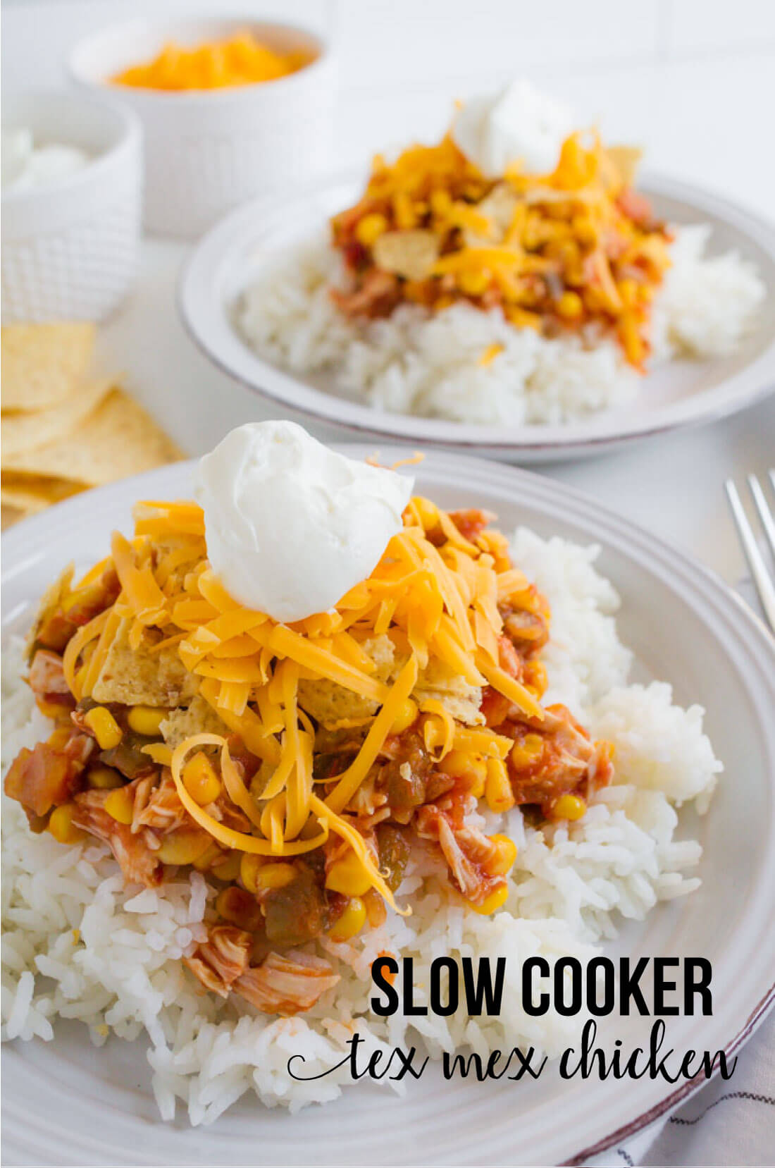 Slow Cooker Chicken Tex Mex - simple crockpot recipe that the whole family will love! www.thirtyhandmadedays.com