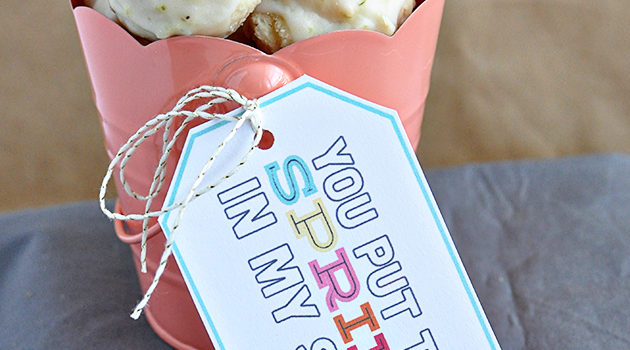 Yummy Spring Cookies + Cute Printable Tag