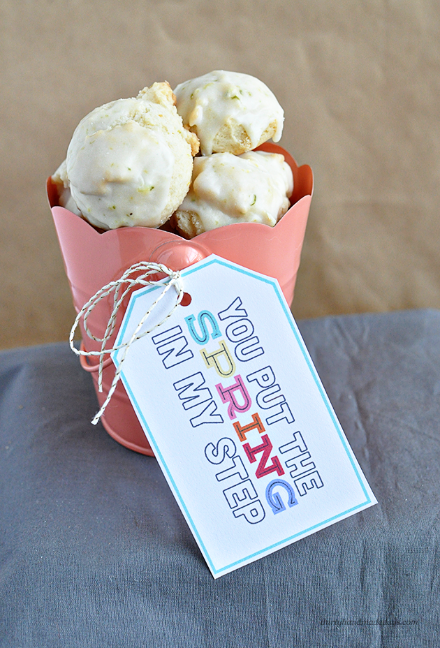 Yummy Spring Lime and Lemon Cookies + Cute Printable Tag - easy to make and taste great, treat your friends and family to this cute tag!   Thirty Handmade Days