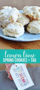 Lime and Lemon Cookies + Printable Tag from www.thirtyhandmadedays.com