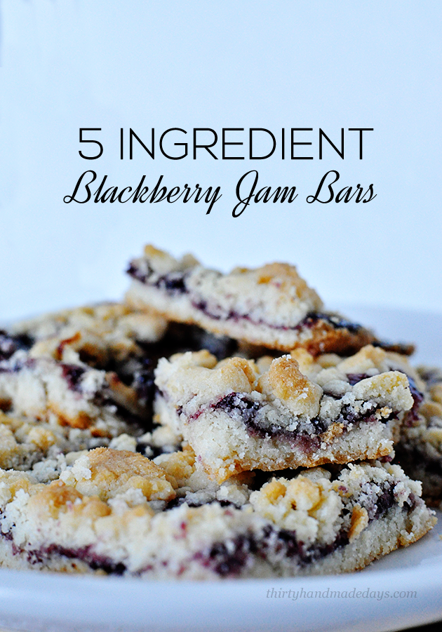 Super delicious and only 5 ingredients- these Blackberry Jam Bars are so simple to make!   Thirty Handmade Days