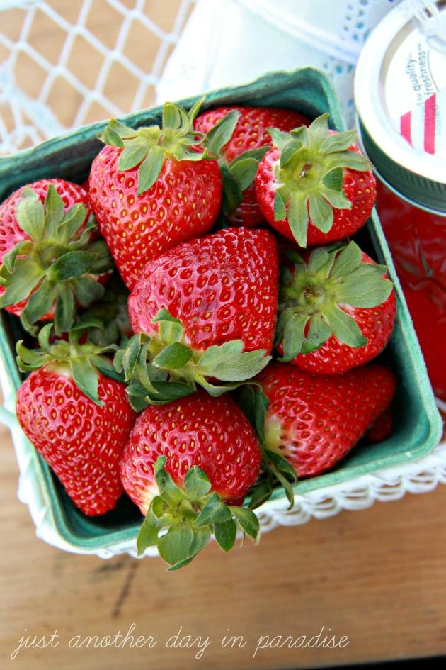 Strawberry Shortcake Kit 2