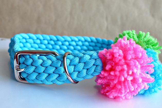 DIY Pom Pom Dog Collar- make your dog feel special.