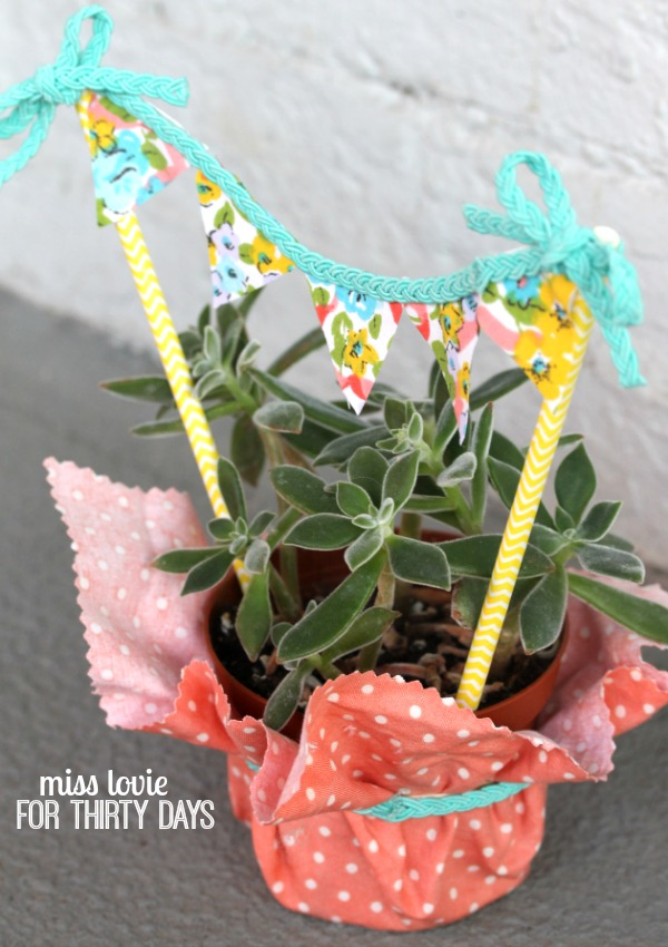 09 Succulent Hostess Gift wit a No Sew Fabric Banner