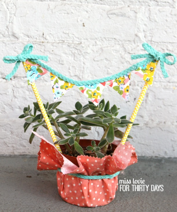 10 Succulent Housewarming Gift and No Sew Bunting