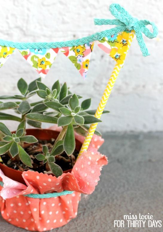 12 no-sew bunting succulent