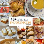 40+ of the best Pumpkin Recipes