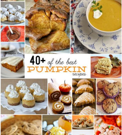 40+ of the Best Pumpkin Recipes - a little something for everyone.
