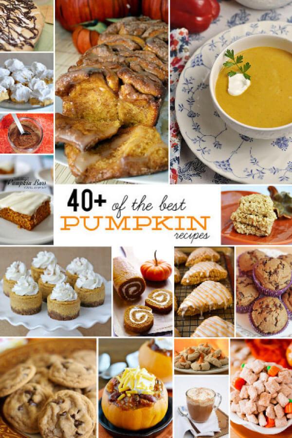 40+ of the Best Pumpkin Recipes - a little something for everyone. www.thirtyhandmadedays.com
