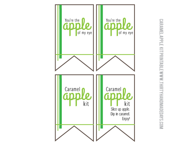 Printable caramel apple kit flags from www.thirtyhandmadedays.com