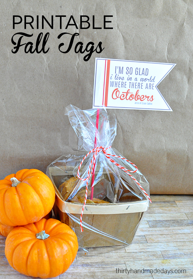 Simple and cute printable fall tags from www.thrirtyhandmadedays.com