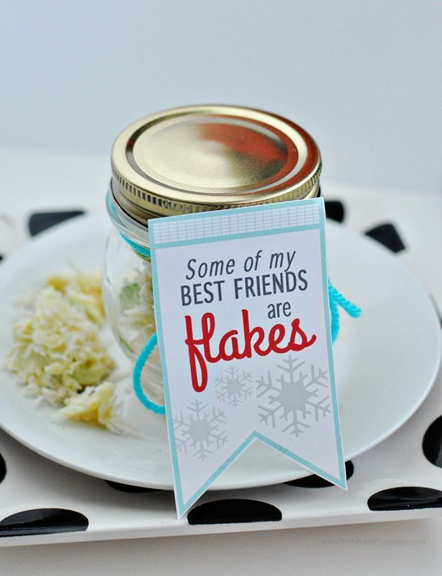 "Cute holiday printable ""Some of my best friends are flakes!"" Make with snowflake apples from www.thirtyhandmadedays.com"