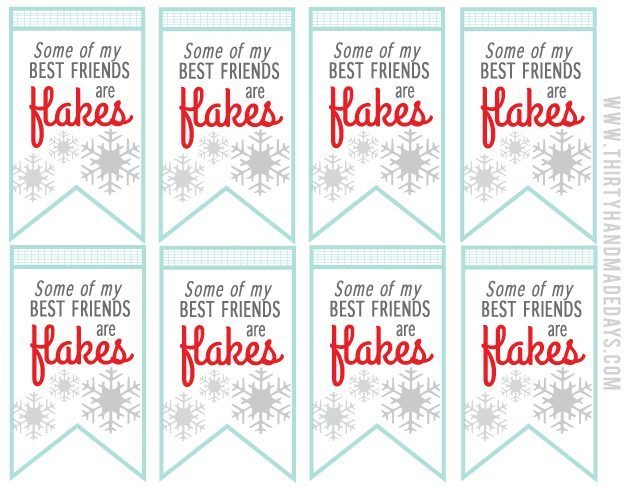 "Cute holiday tags printable ""Some of my best friends are flakes!"" Make with snowflake apples from thirtyhandmadedays.com"