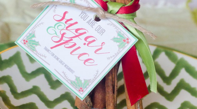 FREE Sugar & Spice Neighbor Gift Tag by Love The Day