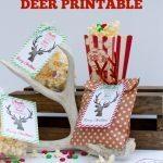 Simple Christmas Gift + Deer Printable