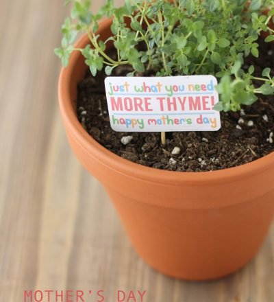 """Thyme"" Mother's Day or Birthday Gift"