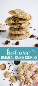 Oatmeal Raisin Cookies - the best cookies recipe you'll ever try from www.thirtyhandmadedays.comOatmeal Raisin Cookies - the best cookies recipe you'll ever try from www.thirtyhandmadedays.com