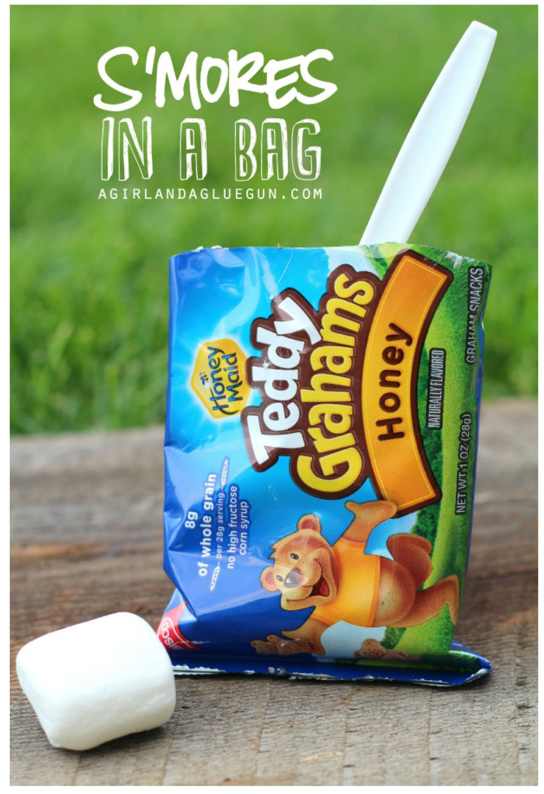 Smores in a Baxg -the best campfire treat.