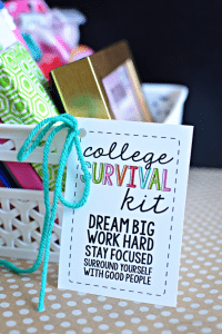 College Survival Kit with printables - cute gift idea for someone on their way to college thirtyhandmadedays.com