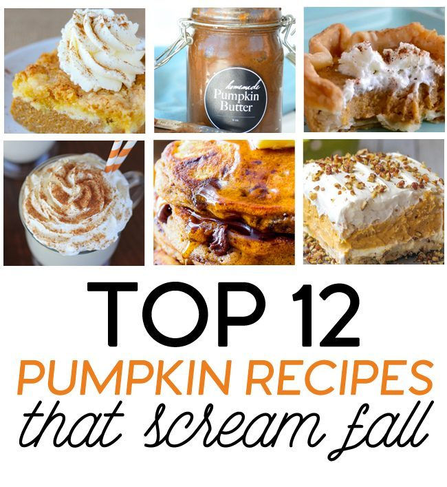 Top 12 Pumpkin Recipes that Scream Fall