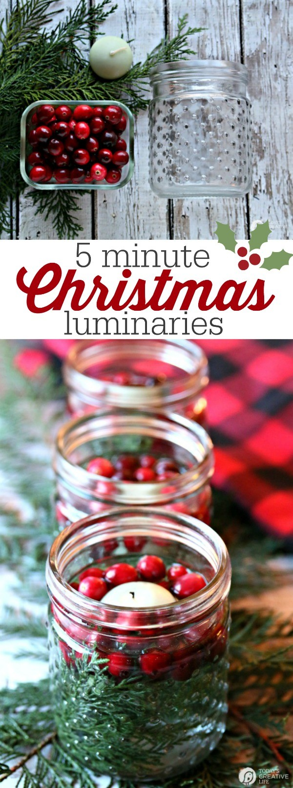 5 Minute Christmas Luminaries - easy to make and make your house smell good!
