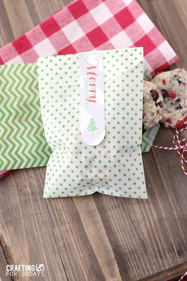Printable Christmas Gift Tags from Crafting E via thirtyhandmadedays.com