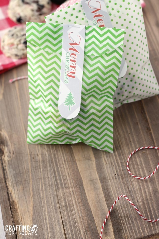 Printable Christmas Gift Tags from Crafting E via www.thirtyhandmadedays.com