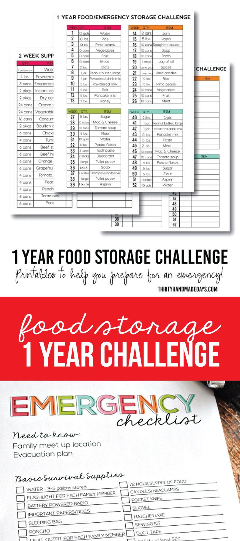 1 Year Food Storage Challenge Thirty Handmade Days