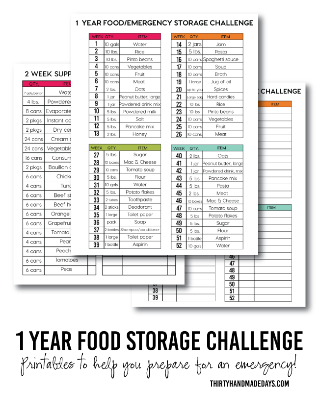 1 Year Food Storage Challenge with printables from www.thirtyhandmadedays.com