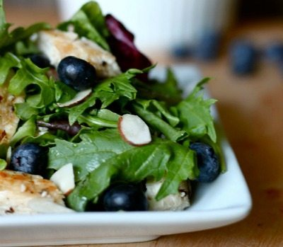 Grilled-Chicken-and-Blueberry-Salad from Skinny Ms. / round up on ThirtyHandmadeDays.com