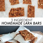 3 Ingredient Homemade Lara Bars
