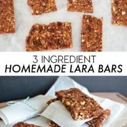 3 Ingredient Homemade Lara Bars www.thirtyhandmadedays.com