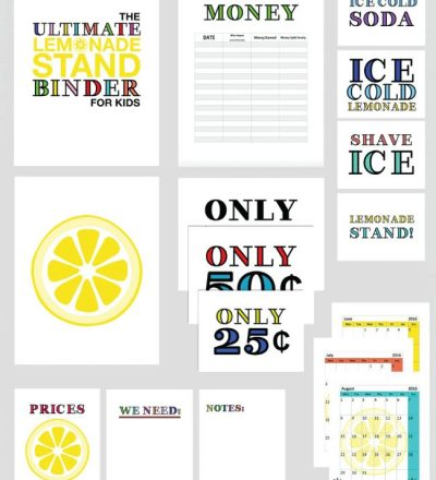 Ultimate Lemonade Stand Binder from All Things Thrifty