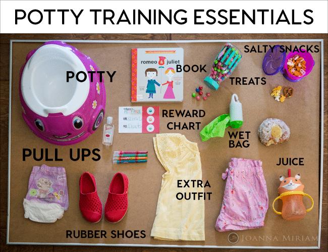 Potty Training Essentials - items to have on hand for successful potty training www.thirtyhandmadedays.com